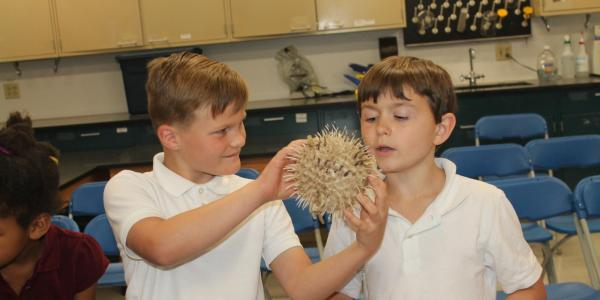 2 boys looking at a puffer fish