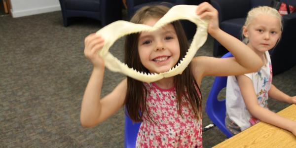 girl looking through shark jaw