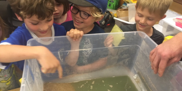 students looking in a tank