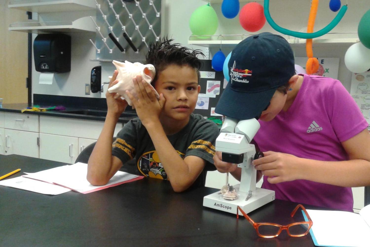 boy holding large shell and another boy looking through microscope
