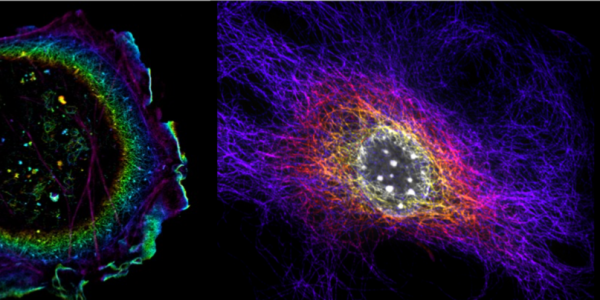 BioFrontiers Advanced Light Microscopy Core