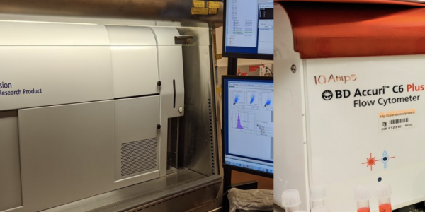 Flow Cytometry Shared Core (RRID:SCR_019309)
