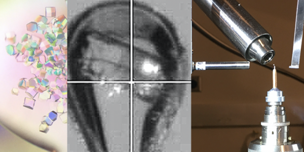 Macromolecular X-ray Crystallography Core (RRID:SCR_019310)