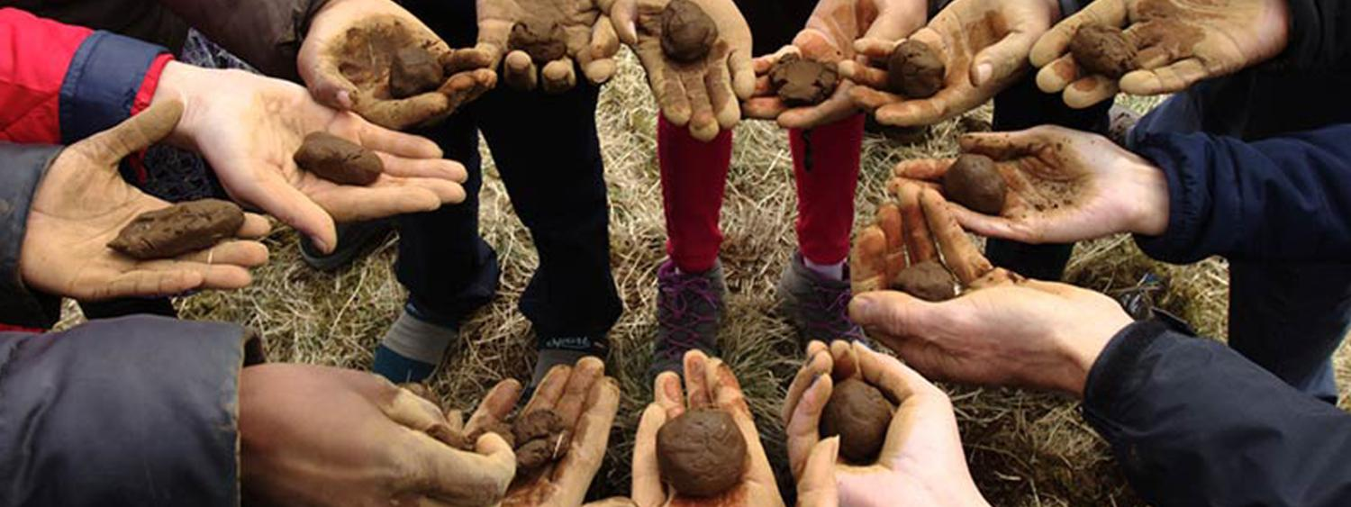 hands in a circle comparing soil in palms