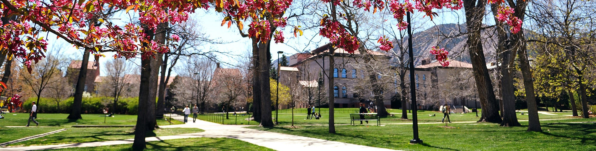 CU-Boulder campus in the spring