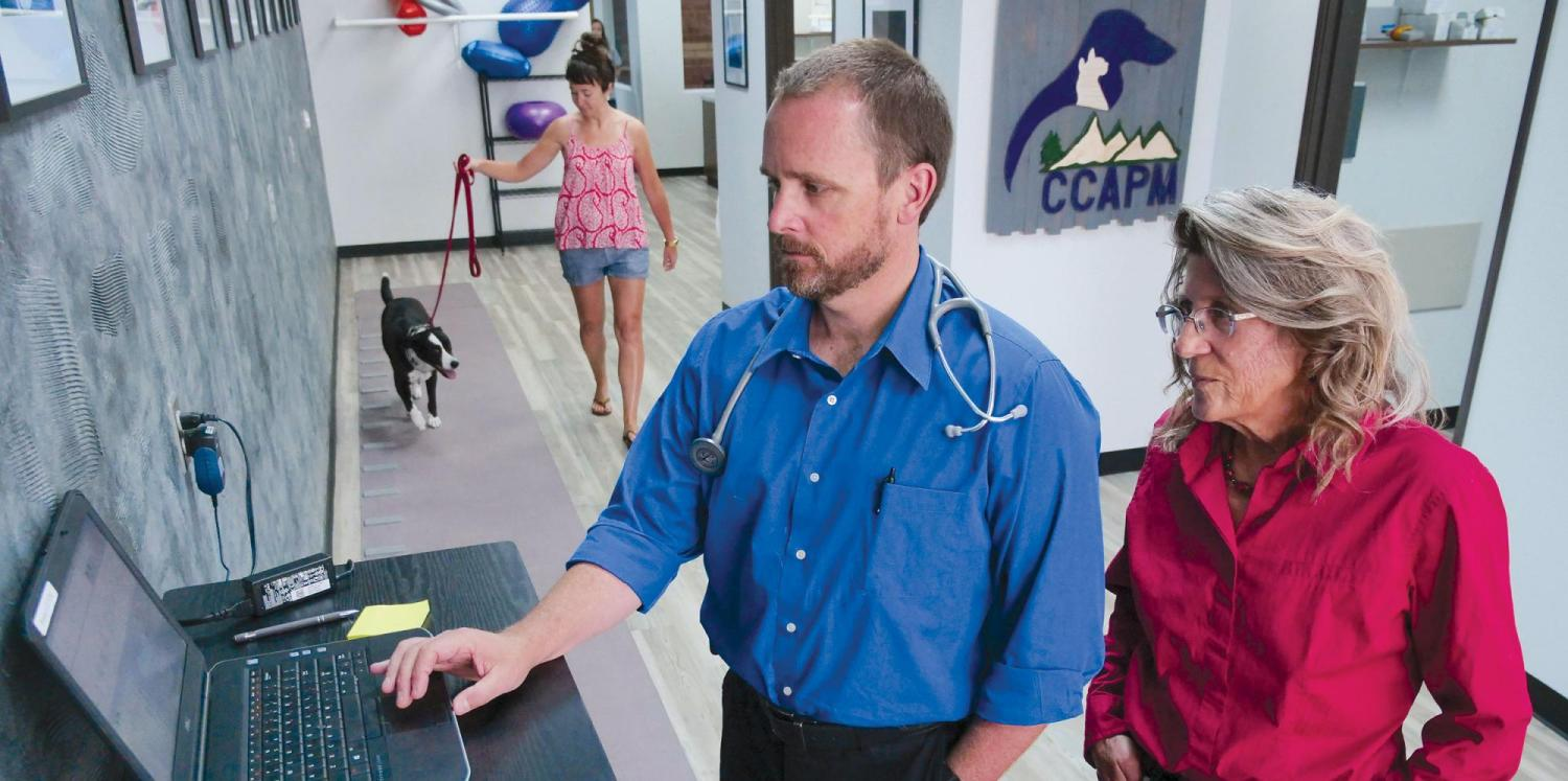 Vet and researcher with dog and owner walking in background