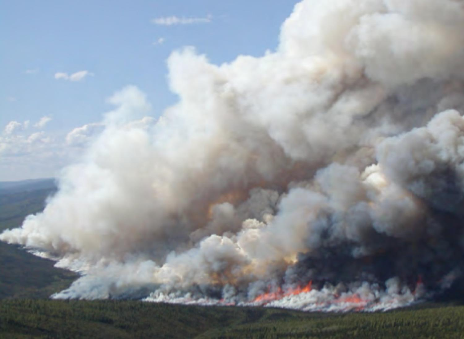 The start of the Ericson Creek fire that burned for three months north of Fairbanks in the severe fire season of 2004.
