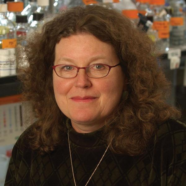 Leslie Leinwand