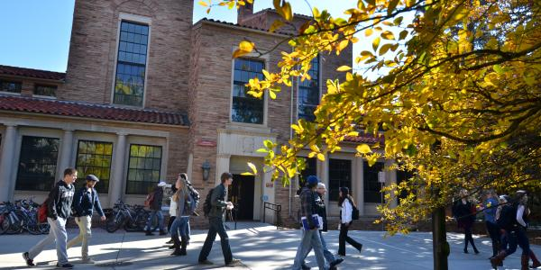 Yellow fall trees adorn the walkway between buildings as students walk to class.