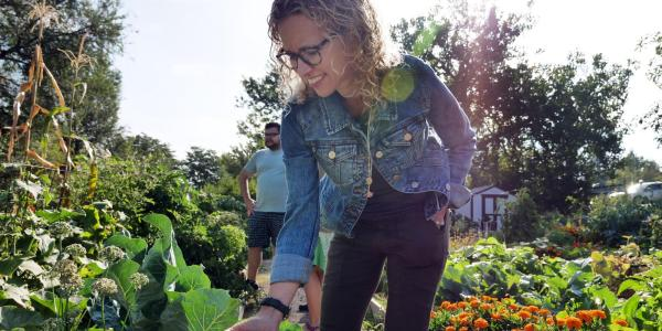 Professor Jill Litt looks at a squash at a community garden next to Regis University in Denver
