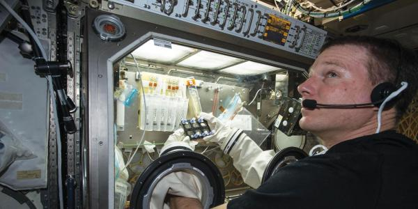 NASA astronaut Terry Virts manipulating a BioServe experiment on ISS.