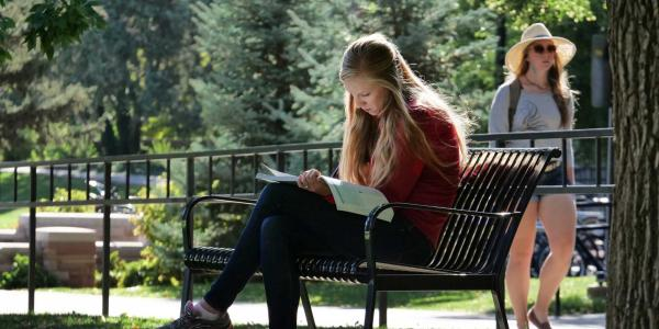 Student studying on bench outdoors