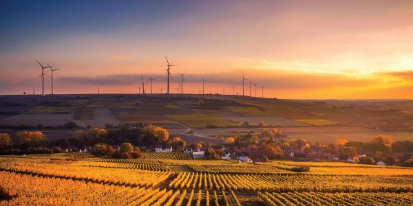 Agricultural landscape and windfarm at sunset