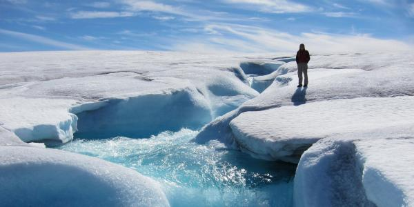 Researcher standing on ice cap