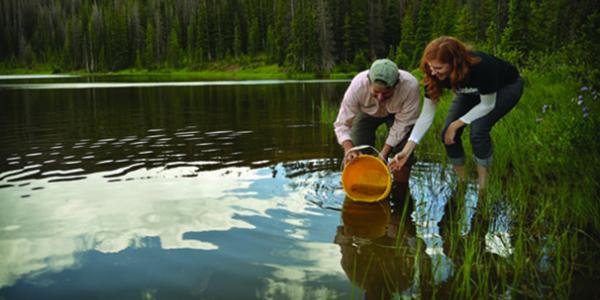 Students stocking trout in waters