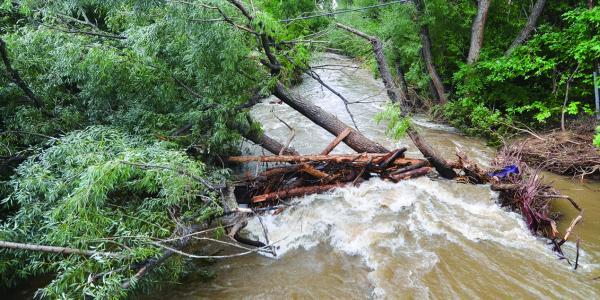 Boulder Creek after the flood