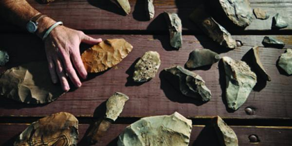 Various rocks and fossils