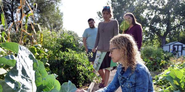 Students and healthy garden