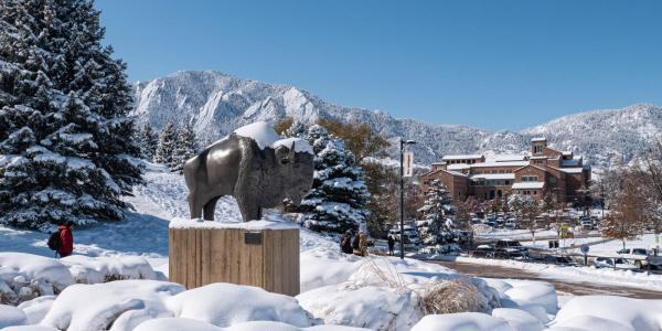 Snow covered Ralphie statue