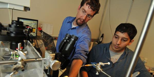 Student and faculty member working in Borden lab