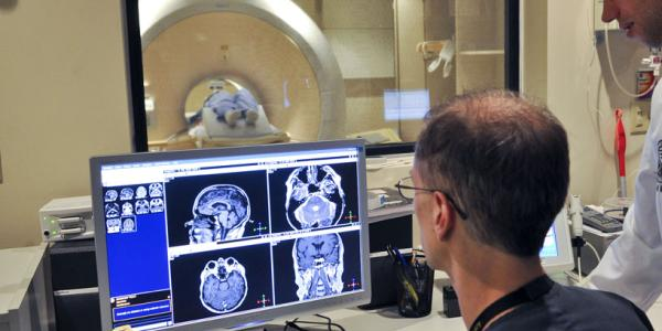 Man looking at the human brain on a computer screen