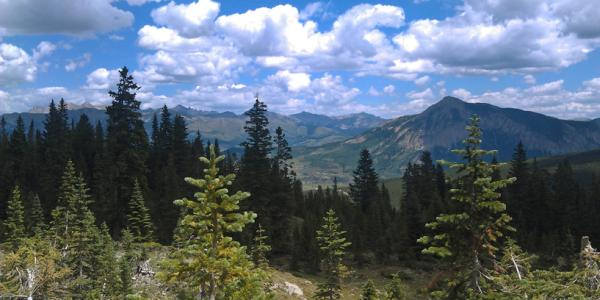 Scenic of mountains and trees