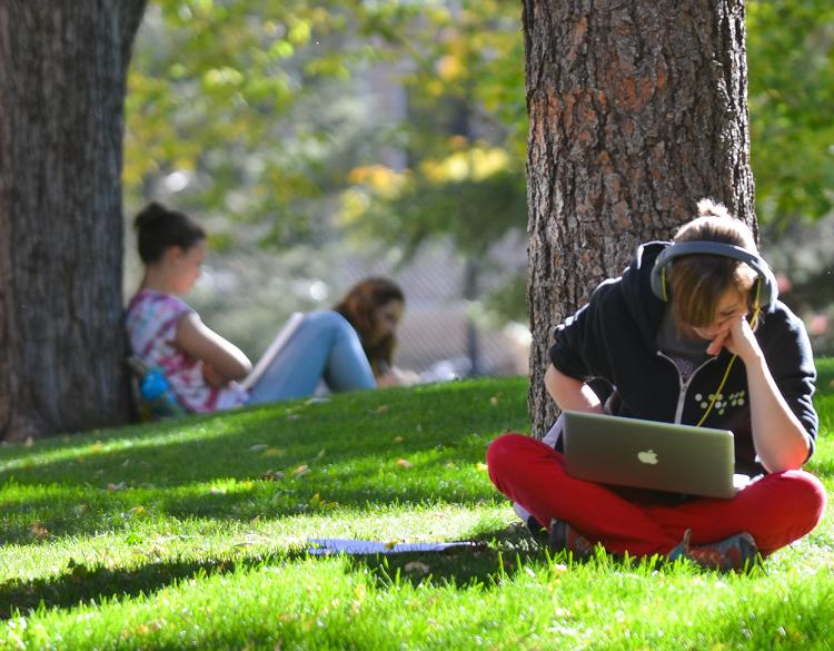 Student studying in the quad