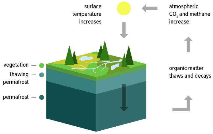 Permafrost graphic