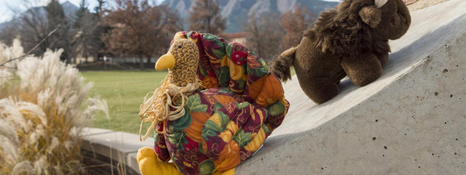 A toy turkey and buffalo stand in front of the Flatirons