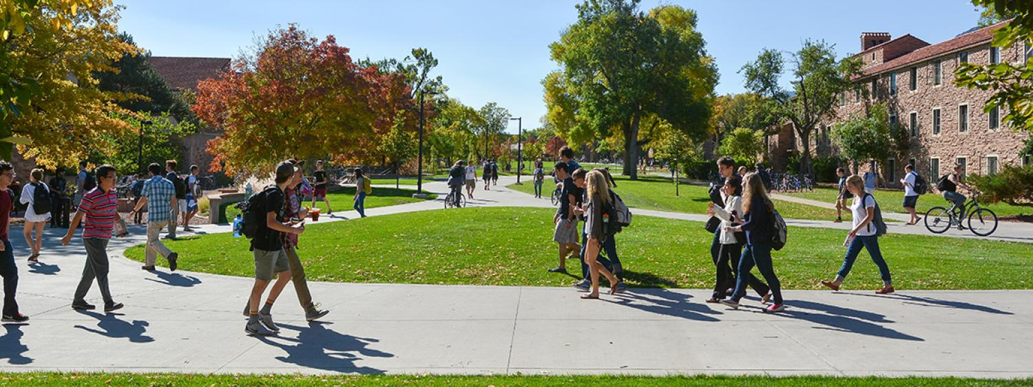 Sutdents walking through the engineering quad