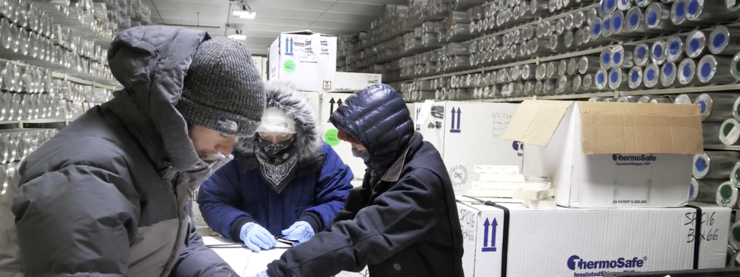 researchers analyzing ice in the ice core laboratory