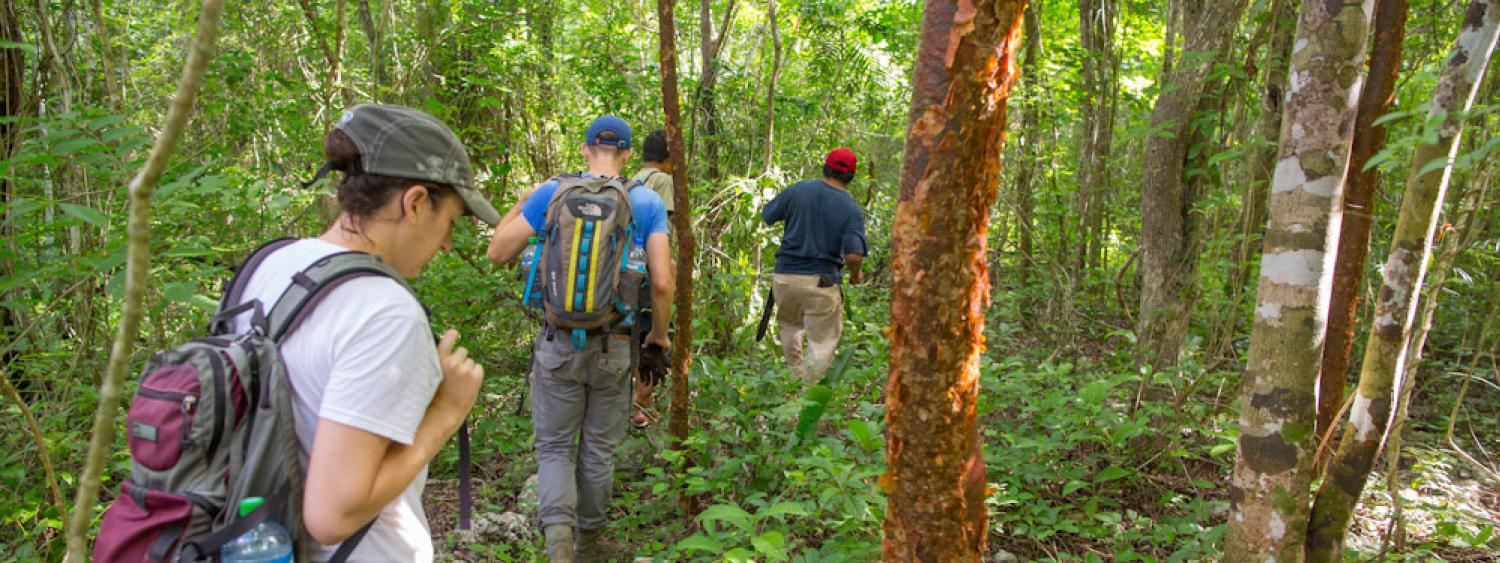 Sarah Kurnick walks with locals in the jungle