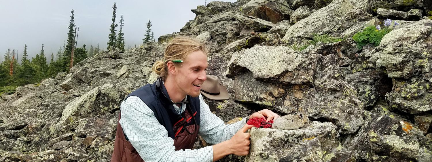 Student Max Wasser releases pika