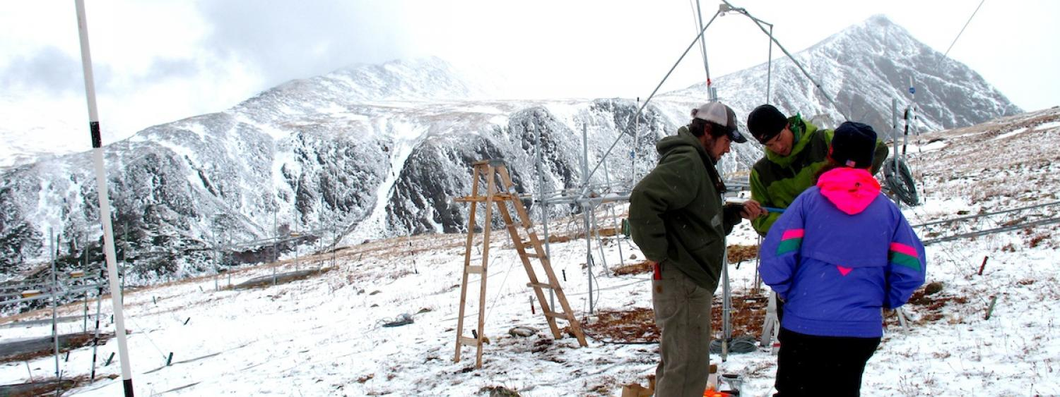 Three research collect data on a snowy Niwot Ridge.