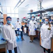 CU Boulder researchers