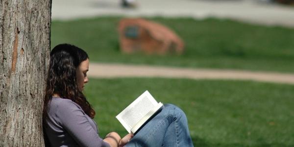 Student reading under tree