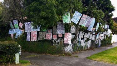 Free Speech Signs on soem trees