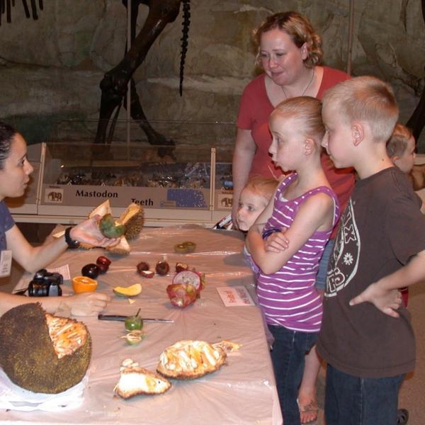 Julia walks visitors through fun fruits from around the world, like Japanese eggplant.
