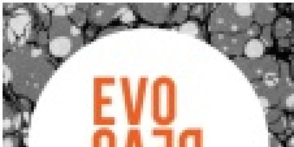 pasedb logo