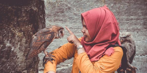 A girl holdingan owl