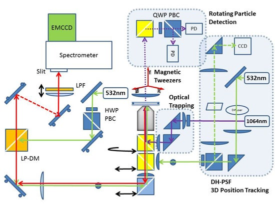Com Continuous News Colorado >> Multifunctional Raman Micro-Spectroscopy   Soft Matter Physics Smalyukh Research Group ...
