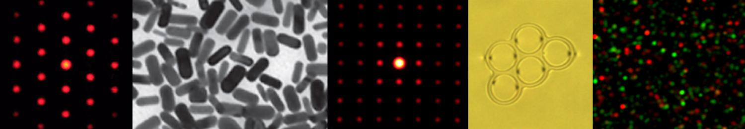 Gold nanoparticles and diffraction patterns from defects arrays in cholesteric