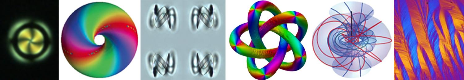 Handlebody and knotted colloids in nematic, cholesteric torons and DNA liquid crystal