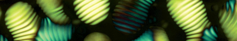 Cellulose cholesteric liquid crystal