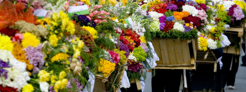 Festival of Flowers, Medellin, Colombia