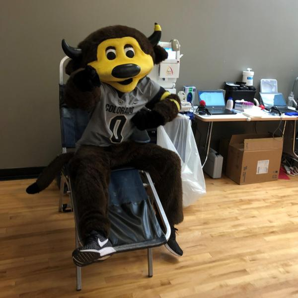 Chip at the Blood Drive
