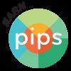 PIP Icon
