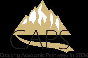 Creating Academic Pathways in STEM