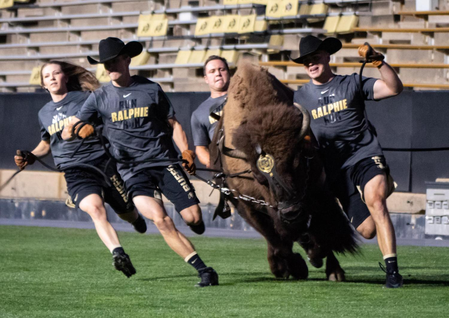 Ralphie running during kickoff