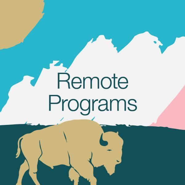 Remote programs